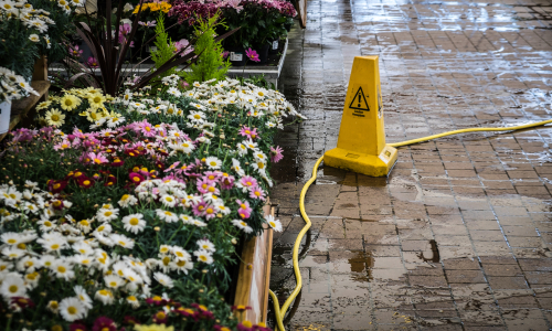 common slip and fall accidents in the spring